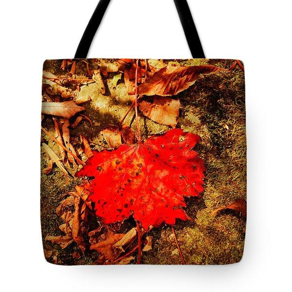 Red Leaf On Mossy Rock Tote Bag