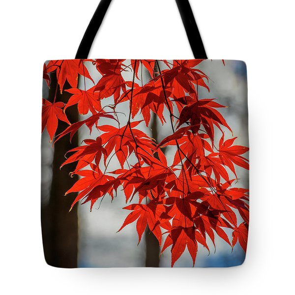 Tote Bag featuring the photograph Red Leaves by Cindy Lark Hartman