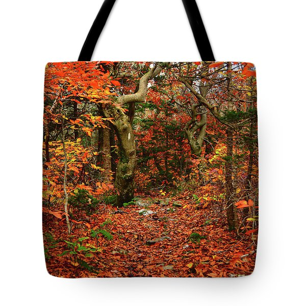 Tote Bag featuring the photograph Red Oaks And At Blaze Horizontal by Raymond Salani III