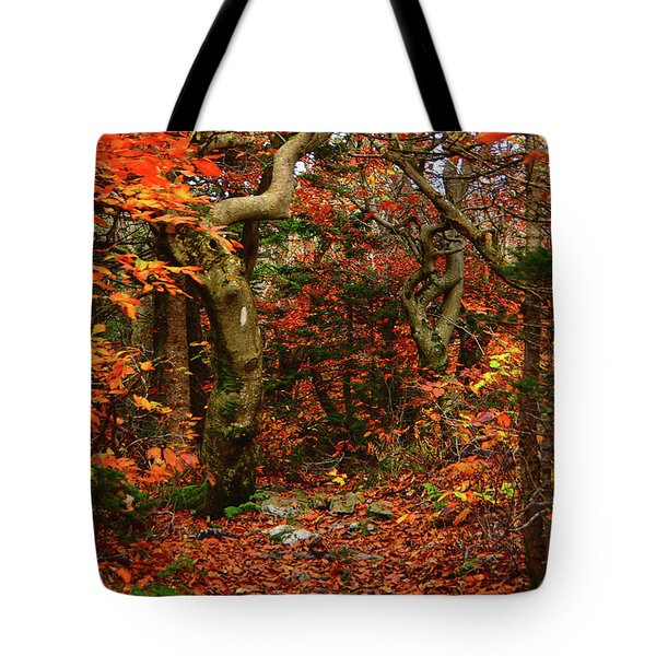 Tote Bag featuring the photograph Red Oaks And At Blaze Vertical by Raymond Salani III