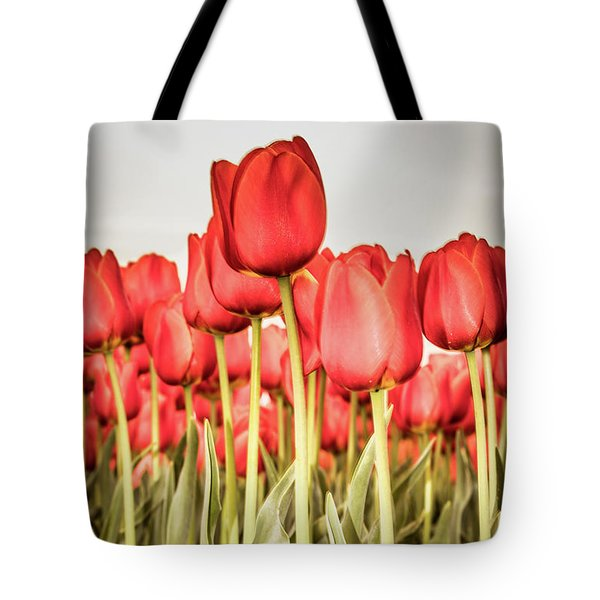 Tote Bag featuring the photograph Red Tulip Field In Portrait Format. by Anjo Ten Kate