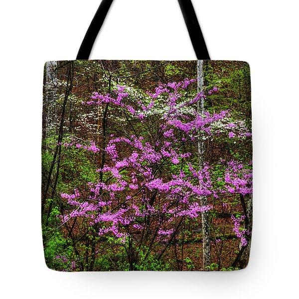 Redbud Dogwood And Sycamore Tote Bag