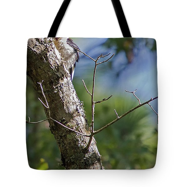 Redhead Woodpecker Tote Bag