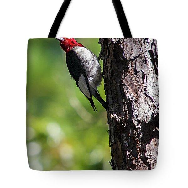 Redhead Woodpecker II Tote Bag