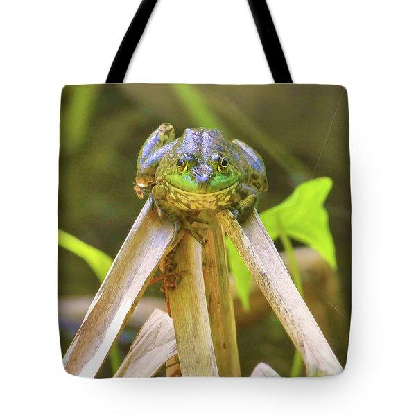 Reeds Bully Tote Bag