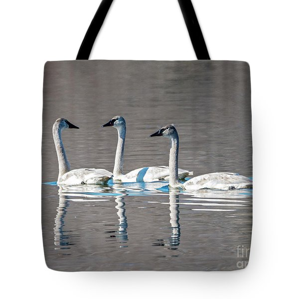 Reflections Of Three Tote Bag