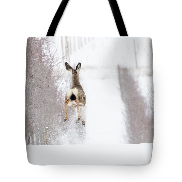 Reindeer In Training Tote Bag