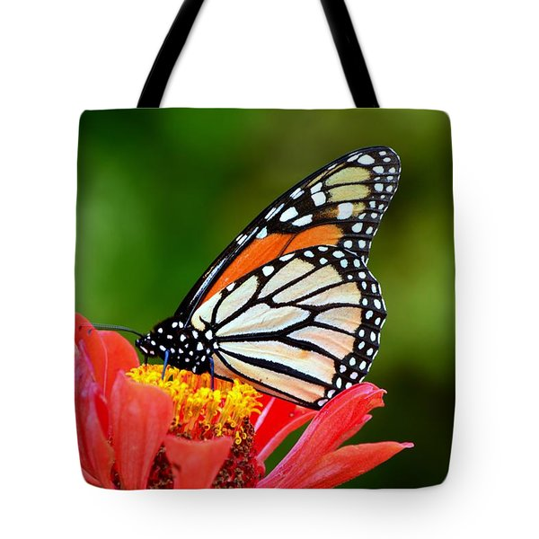 Tote Bag featuring the photograph Remembrance Sweet Angel Boy  by Lisa Wooten
