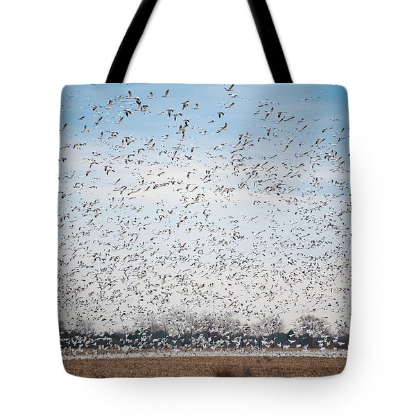 Resting On The Flyway Tote Bag