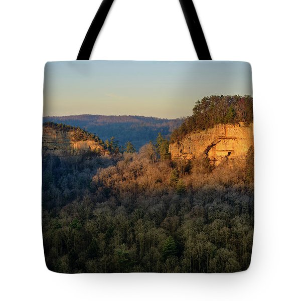 Revenuer's Rock Tote Bag
