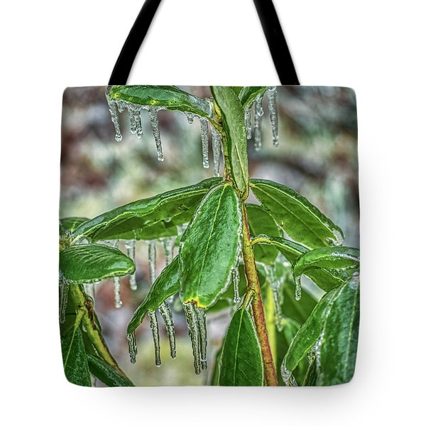 Tote Bag featuring the photograph Rhodo On The Rocks by Meta Gatschenberger