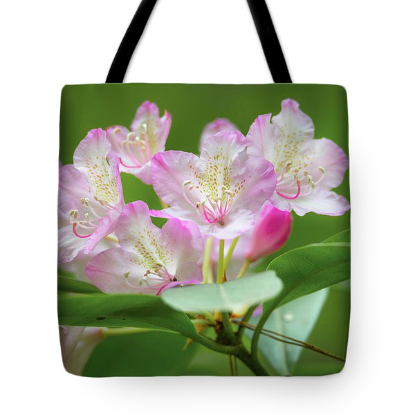 Tote Bag featuring the photograph Rhododendron 3 by Leland D Howard