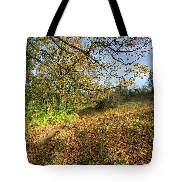 Richmond Autumn Tote Bag