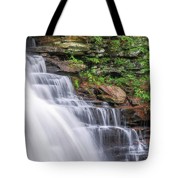 Tote Bag featuring the photograph Rickett's Glen Waterfall by Sharon Seaward