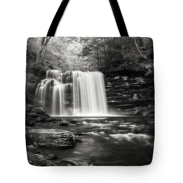 Tote Bag featuring the photograph Rickett's Glen Waterscape by Sharon Seaward