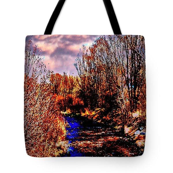 Rio Taos Bosque V Tote Bag