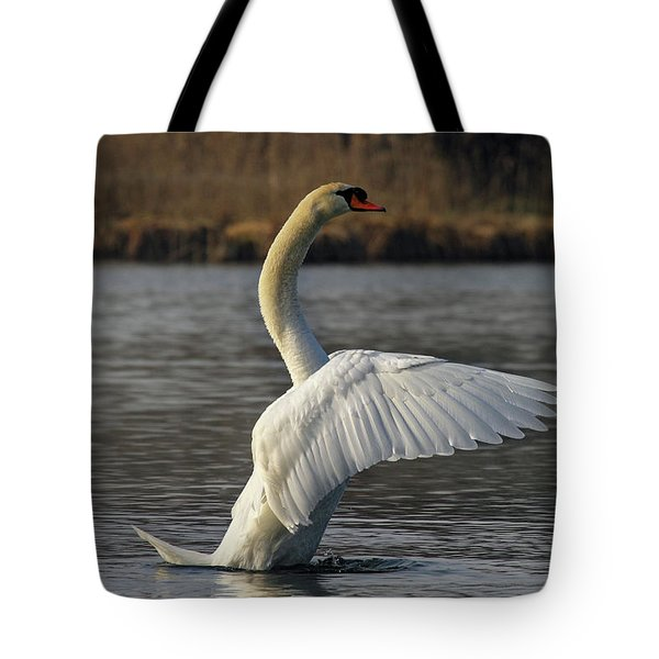 River Waal Swan Tote Bag