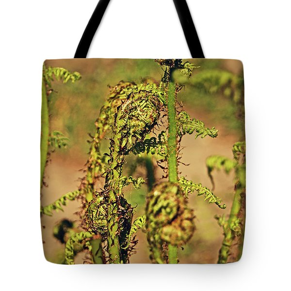 Rivington Terraced Gardens. Fern Frond. Tote Bag
