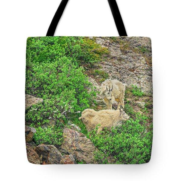 Roaming Mountain Goats In Colorado's Hinterland Tote Bag
