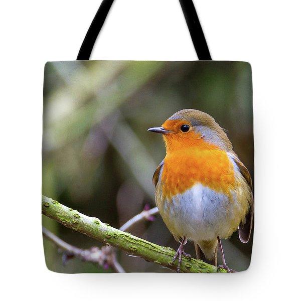 Robin. On Guard Tote Bag