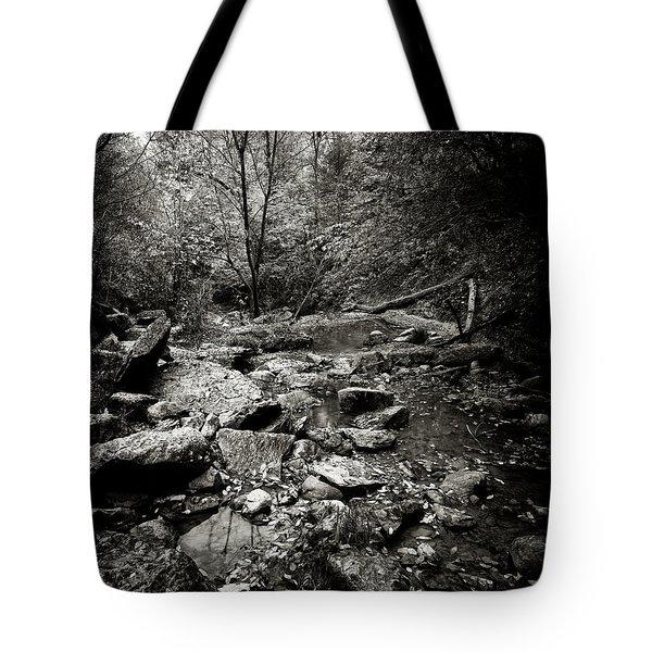 Rock Glen Tote Bag