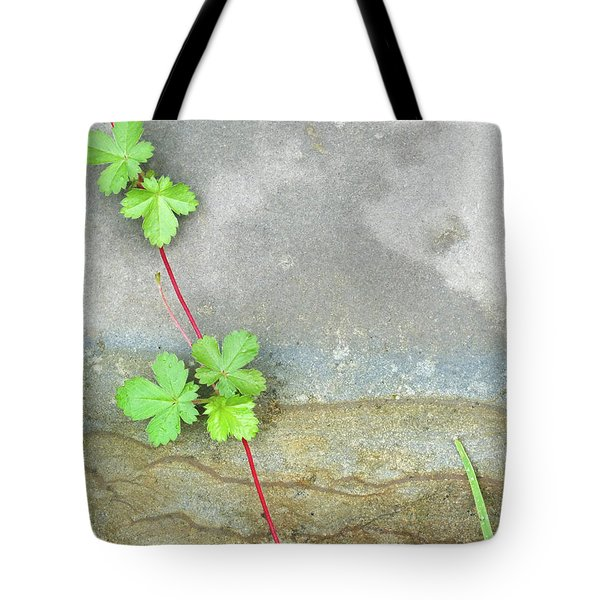 Rock Stain Abstract 4 Tote Bag