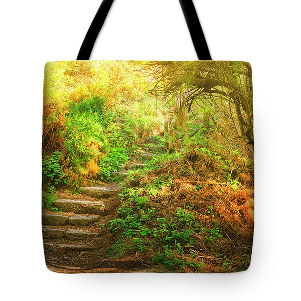 Rock Stairs Tote Bag