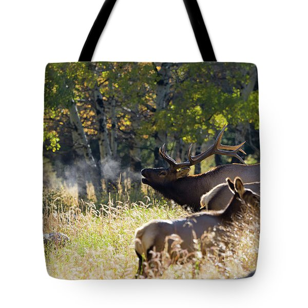 Rocky Mountain Bull Elk Bugeling Tote Bag