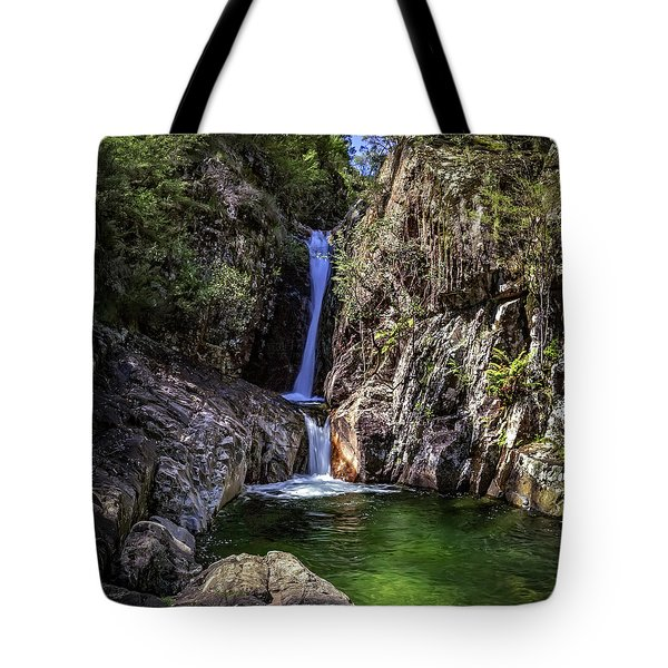 Rollalson Falls Tote Bag