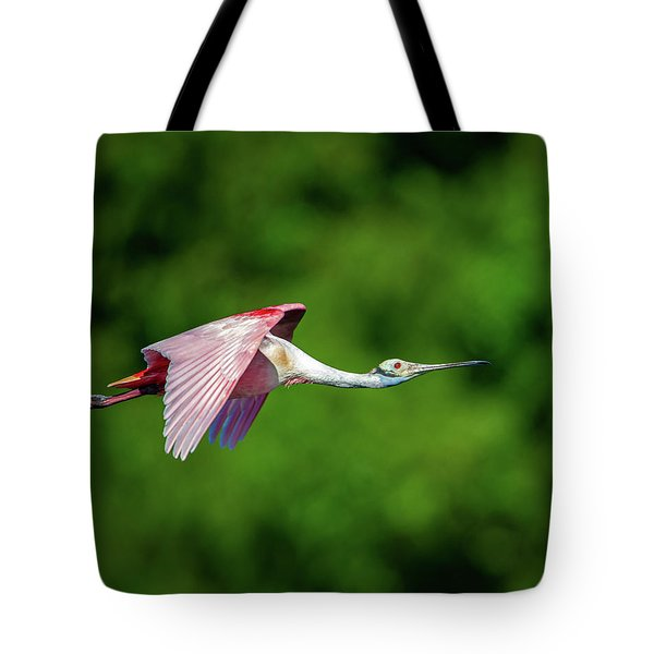 Tote Bag featuring the photograph Roseate Spoonbill by Jeff Phillippi