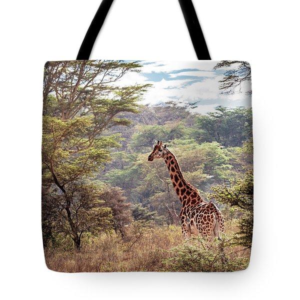 Rothschild Giraffe In Lake Nakuru Kenya Tote Bag