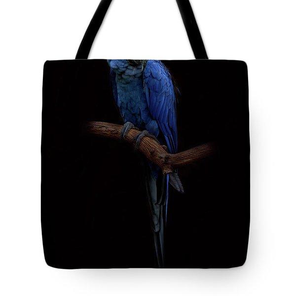Royal Blue Beauty  Tote Bag