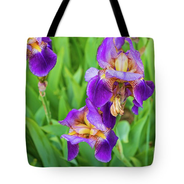 Royal Purple Irise Tote Bag