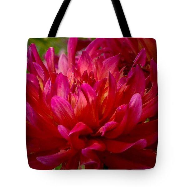 Ruby Red Dahlia Tote Bag