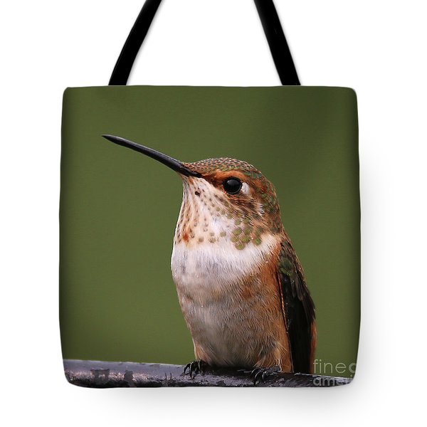 Tote Bag featuring the photograph Rufous Hummingbird by Sue Harper
