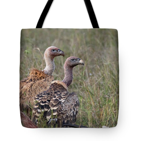 Tote Bag featuring the photograph Ruppell's Griffons by Thomas Kallmeyer