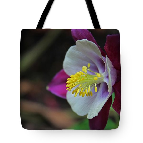 Saffron Stamens I Tote Bag