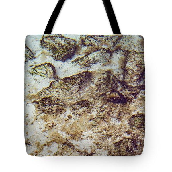 Sand 3 Rivers Tote Bag