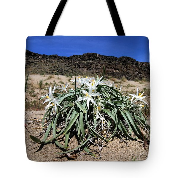 Star Lilys Its Springtime In The Rockys Tote Bag