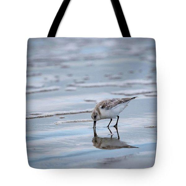 Sanderling Foraging Tote Bag