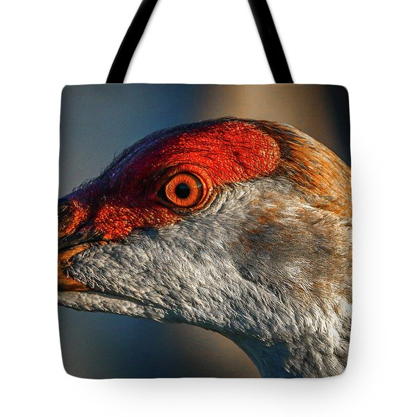 Tote Bag featuring the photograph Sandhill Close Up Portrait by Tom Claud