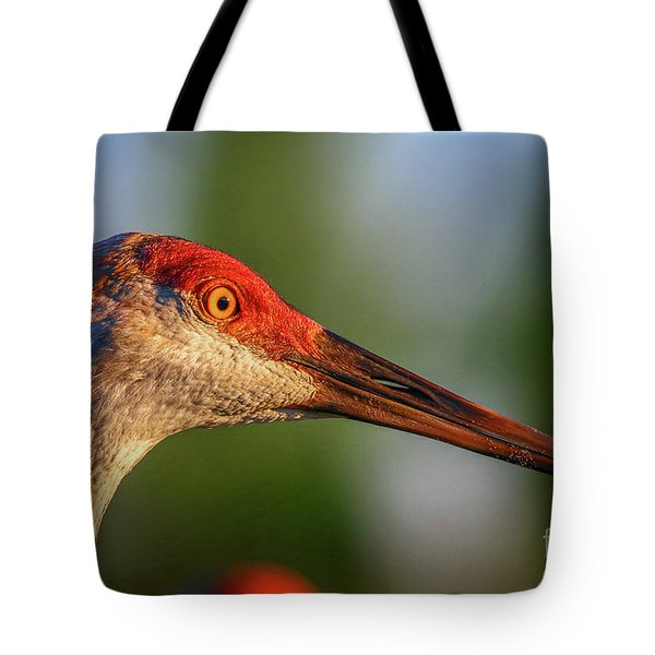 Sandhill Sunlight Portrait Tote Bag