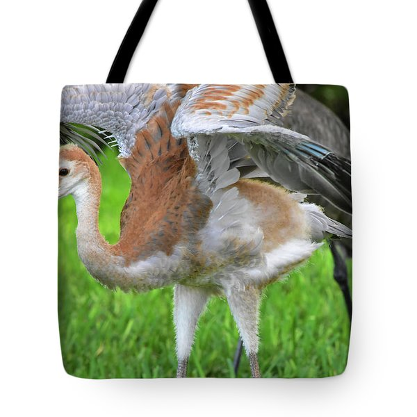 Sandy Crane Shows New Feathers Tote Bag