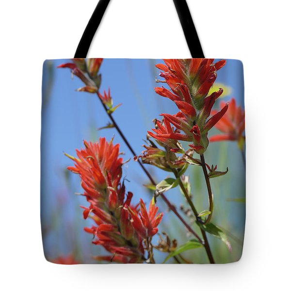Scarlet Indian Paintbrush At Mount St. Helens National Volcanic  Tote Bag