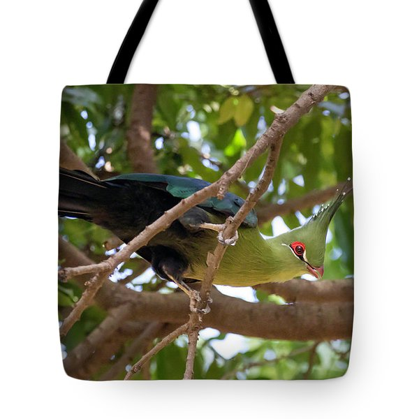 Tote Bag featuring the photograph Schalow's Turaco by Thomas Kallmeyer