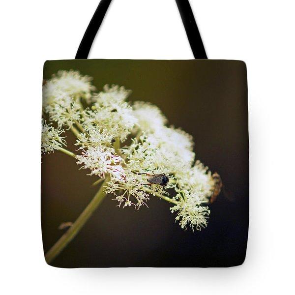 Scotland. Loch Rannoch. White Flowerhead. Tote Bag