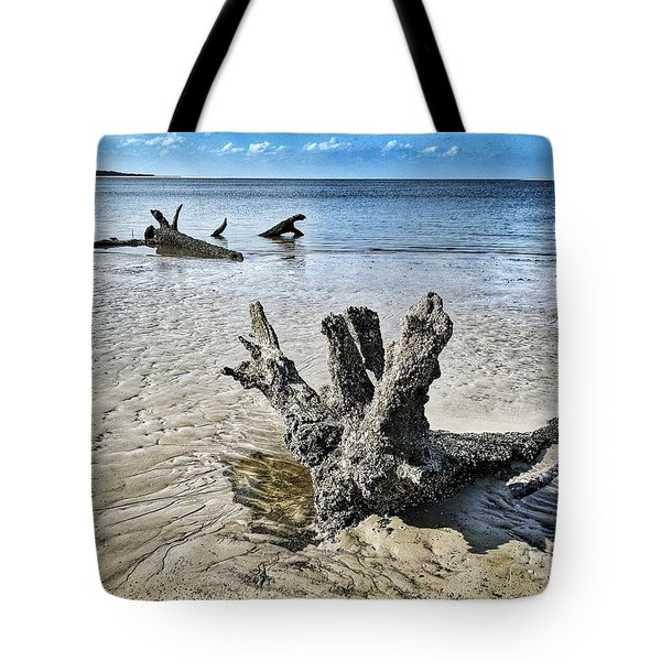 Sculpted By The Sea Tote Bag