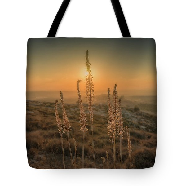 Sea Squills At Sunset Tote Bag