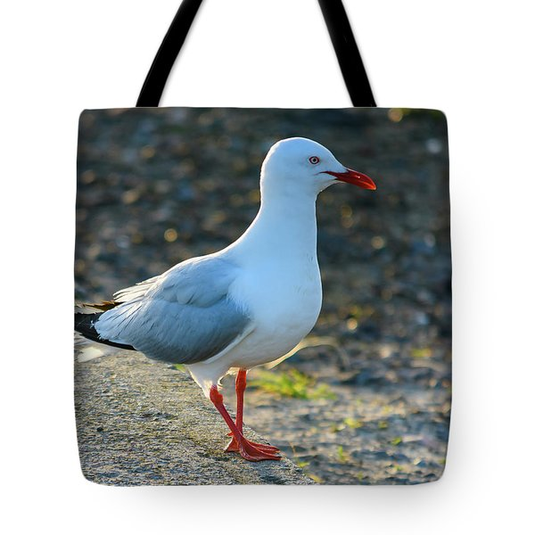 Seagull On The Breakwall Tote Bag