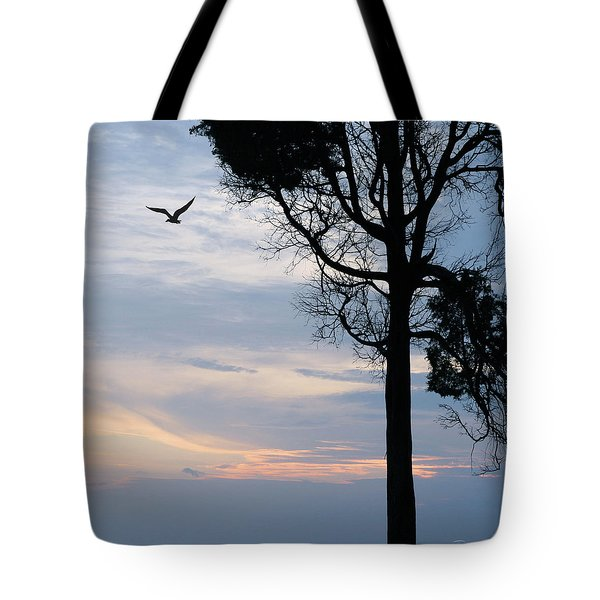 Seagull Sunset At Catawba Tote Bag